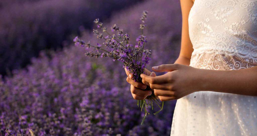 Peace Love Om Tipps gegen Mücken Lavendel